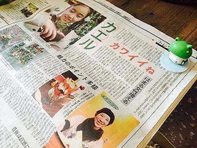 カエル新聞
