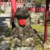 日本でカエルに会える場所