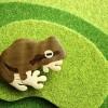 こばみつ亭さんの日本のカエル