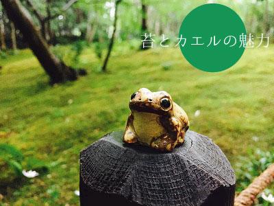 苔とカエル